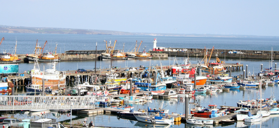 View of Newlyn Harbour from the balcony of Port View